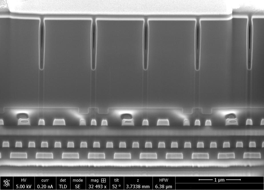 Focused Ion Beam Scanning Electron Microscopy